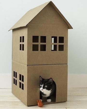 Kedilerimize kullanışlı evler yapalım
